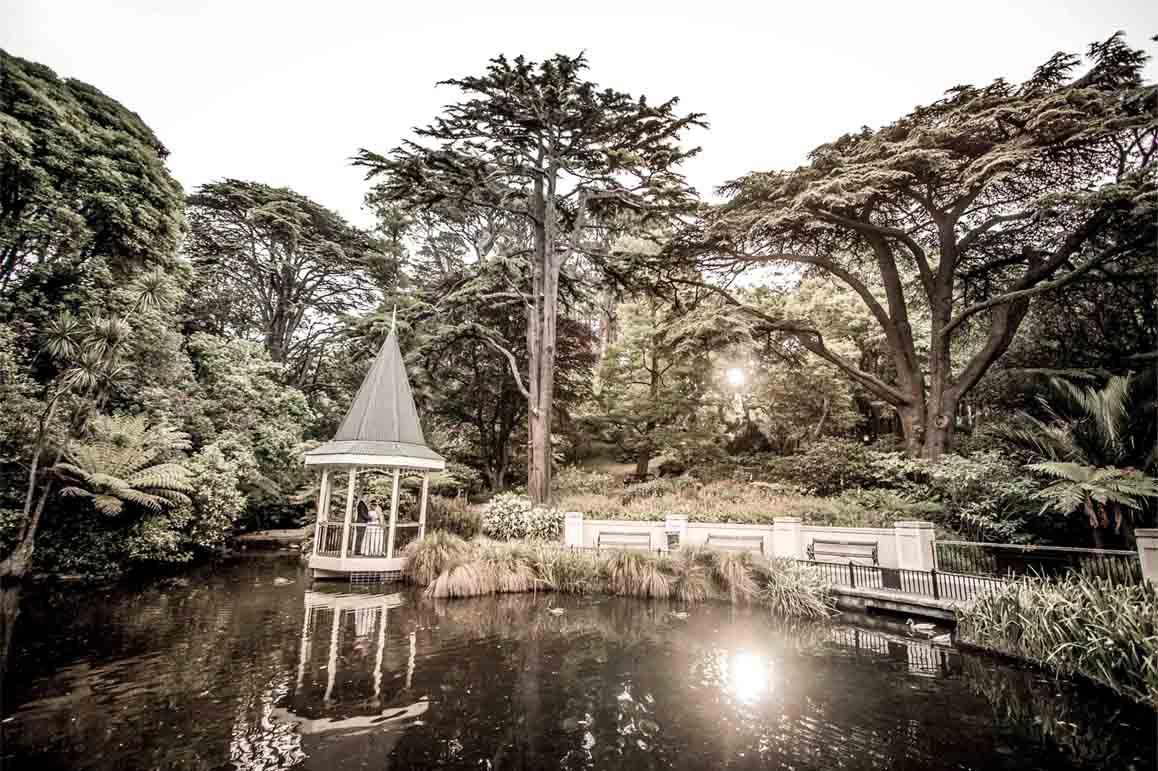 bridal couple on botanic garden lake